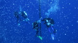 Divers on 5 min stop after Zenobia dive, with hundreds bubbles