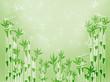 Fototapeten,bambu,magical,grün,hintergrund