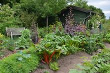 Drewniany domek w ogródku