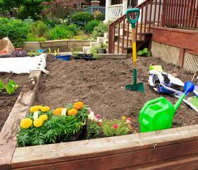 Gardening in front yard