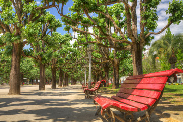 relax on apark bench
