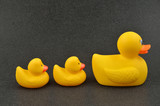 Rubber Duck and Ducklings