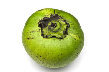 Sapote or chocolate pudding fruit