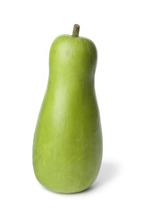 Whole single bottle gourd