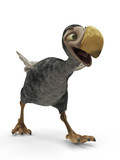 dodo cartoon casual walk