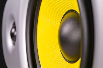 Speaker with tweeter and woofer closeup