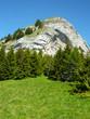 Le Grand Roc (1 814 m), dans les Bauges (Alpes)