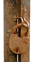 Old rusty padlock on metal gate isolated on white background