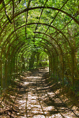 archway in park