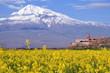 Leinwandbild Motiv Ararat in Armenia