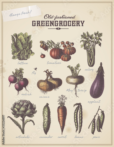 vintage greengrocer's placard with different vegetables © Anja Kaiser