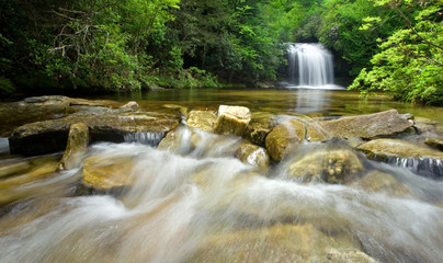 Rain Forest Stream and Waterfall