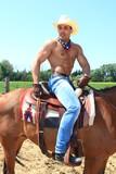 texas, cheval poster