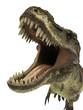 tyrannosaurus rex t-rex