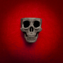 black scary human skull on red velvet background
