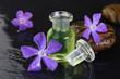 Erfrischendes Duftöl mit Minze und Blütendekoration
