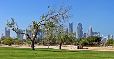Doha , Grass, Sand and the city