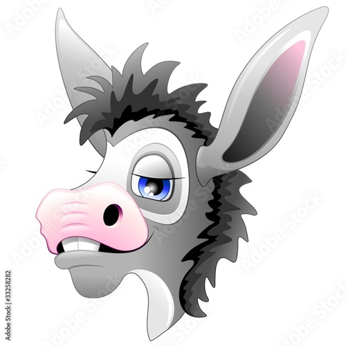 Asino Somaro Mulo Cartoon Testa-Ass Donkey Mule Head-Vector