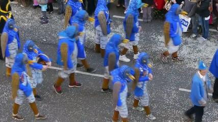 Birds - Carnaval