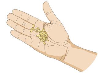 mano con semi