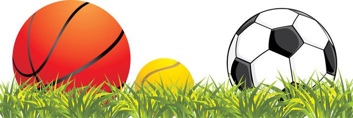 Sporting balls in grass