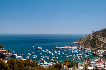 Catalina Harbor on Avalon