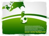 Fototapety soccer player 4