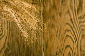Wheat ears (against the background of a wooden wall)