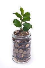 ekologiczne, pieniądze recykling