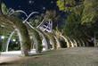 Starry Night over Brisbane Garden