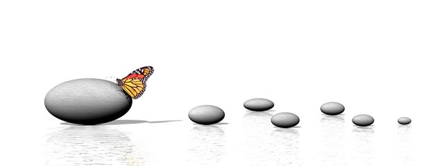 Zen stones and butterfly