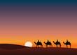 Paysage_Desert_Dromadaire_crépuscule