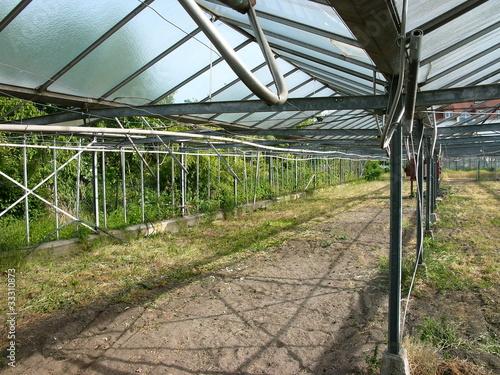 Leeres Gewächshaus mit Glasdach und offenen Seiten