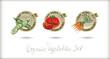 Vector organic labels set.