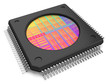 canvas print picture - Microchip with visible die