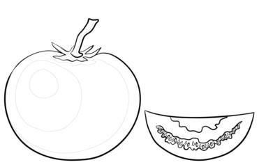 Tomato and segment, contours