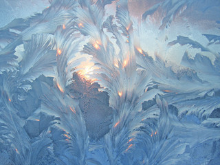 frost and sun on winter glass