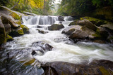 Fototapety Wild Chattooga River Headwaters Geology Western NC Waterfall
