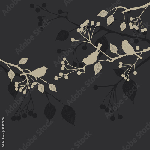 Floral Background, birds