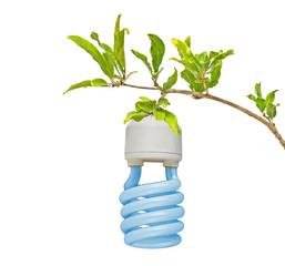 Symbol of green energy
