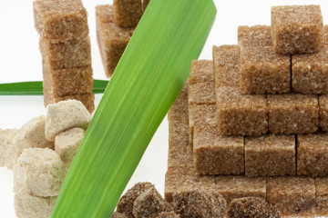 sucres mauricien