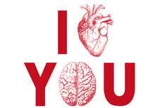I heart you, with realistic heart and brain, vector