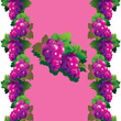 Purple grapes with green leaves on a pink background.