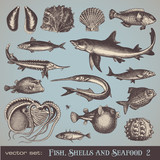 Fototapety fish, shells and seafood (set 2) - various vintage illustrations