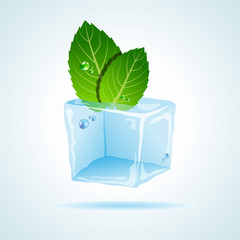 Mint in ice