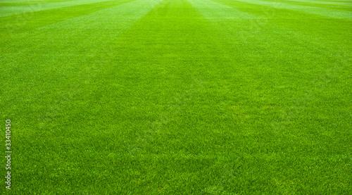 soccer field - 33410450