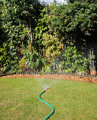 Irrigating a garden border with a Hosepipe