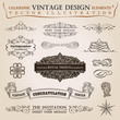 Calligraphic elements vintage Congratulation ribbon. Vector fram