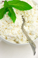 Cottage cheese close-up