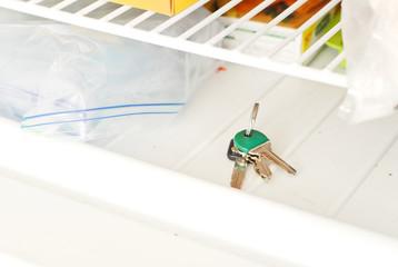 Lost Keys in the Freezer
